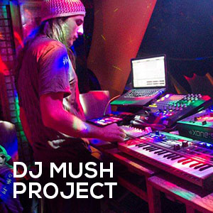 artists-djmushproject