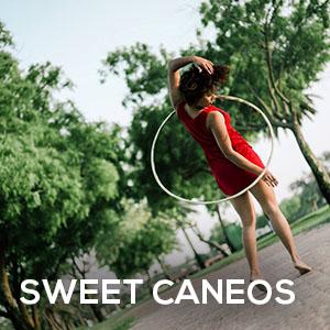 artists-sweet